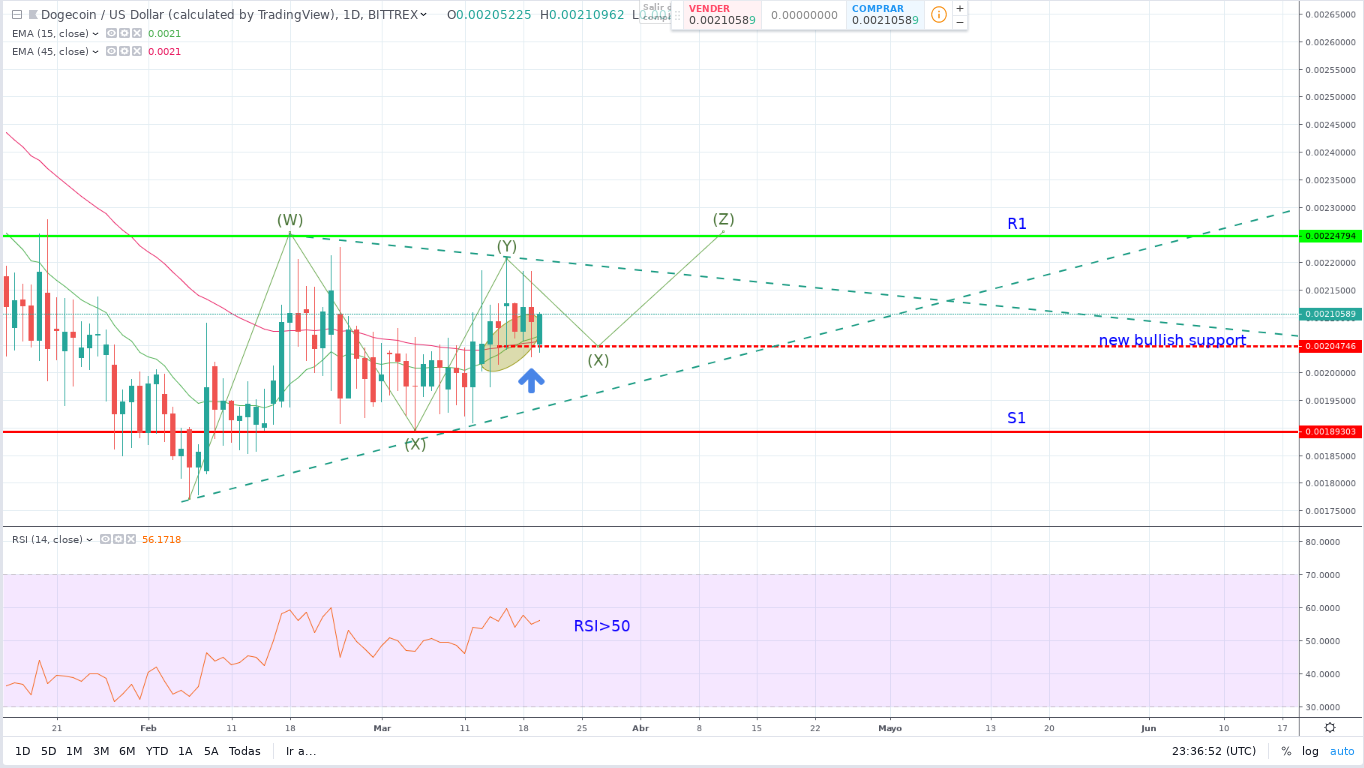 Dogecoin (DOGE) Price Prediction: A Possible Bull Run?