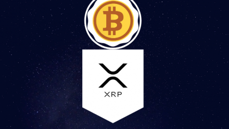 Pompliano Asked If XRP is More Decentralized than Bitcoin, Ripple's CTO Gives Smart Reply