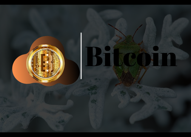 Peter Brandt Says Altcoins are to Bitcoin What Lead is to Gold as BTC Dominates by 70.1%