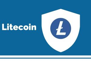 Charlie Lee Gets Motivated as Litecoin (LTC) Gets Displayed during Dolphin vs. Patriots Match